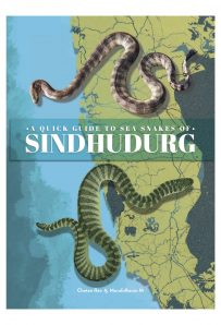 Sea Snakes of Sindhudurg